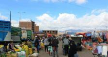 玻利维亚新冠肺炎确诊病例累计达143473例 排查小商贩集市潜在传播隐患