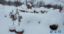 内蒙古8个旗县降特大暴雪 中小学停课 内蒙古8个旗县降特大暴雪 中小学停课