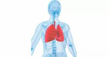 香港专科医生预约   脊柱为什么会下榻?这个病因极易被遗漏